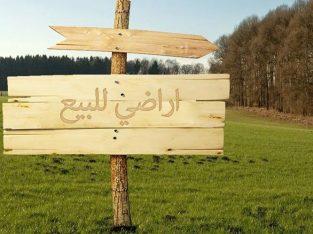ارض للبيع في الياسيمين
