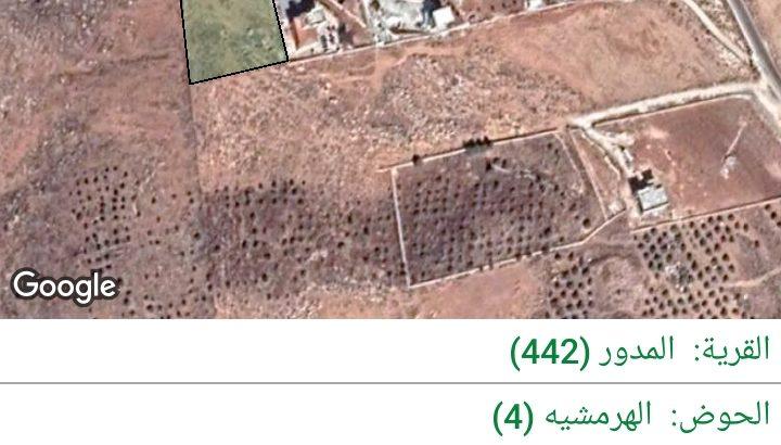 المفرق-قرية المدور (طريق جرش)