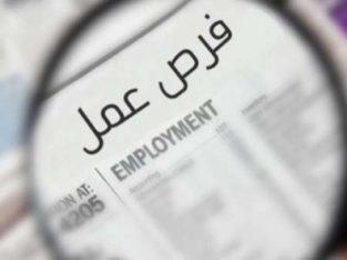 مطلوب موظفين للعمل في كوفي شوب في السابع
